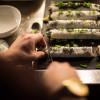 making-sushi-1921